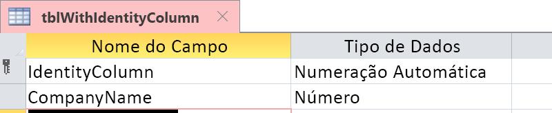 Mostrar que a Coluna de Identidade é identificada como um campo de Numeração Automática.