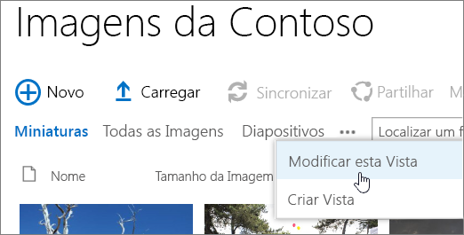 Barra de vista de biblioteca de imagem com visão modificada selecionada