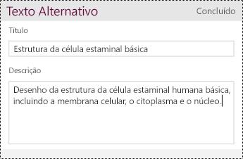 Adicionar Texto Alternativo a uma imagem.