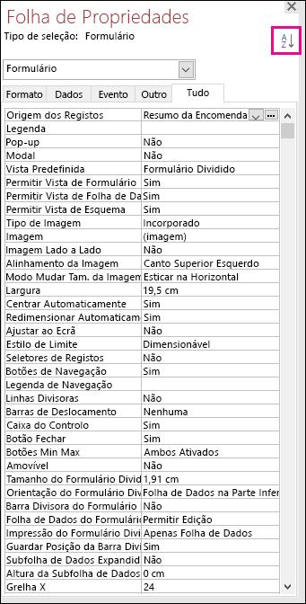 Captura de tela da folha de propriedades do Access sem ordenação de propriedades