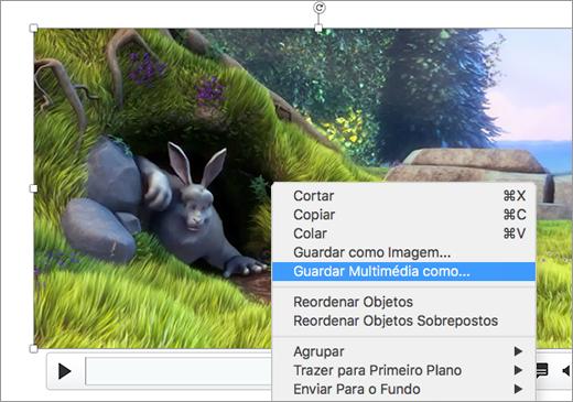 Diapositivo que contém uma imagem e o comando Guardar como imagem selecionado no menu de atalho
