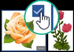 Ao selecionar a miniatura de uma imagem, é apresentada uma marca de verificação no canto superior direito.
