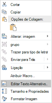Menu de texto do Excel Win32 editar alternativo para imagens