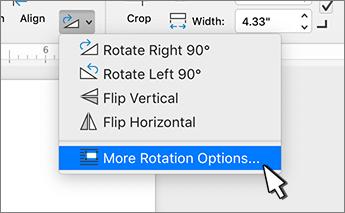 Mais item de menu opções de rotação