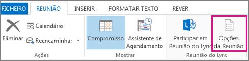 Botão Opções de Reunião no Outlook 2013