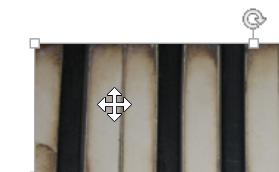 Seta em forma de cruz