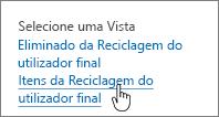 Reciclagem do SharePoint 2013 com a opção Eliminar do utilizador realçada