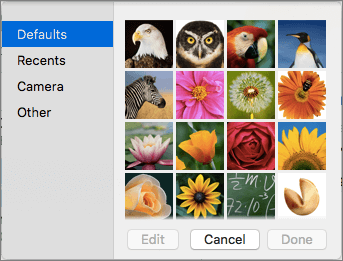 Opções de imagem do contacto do Outlook