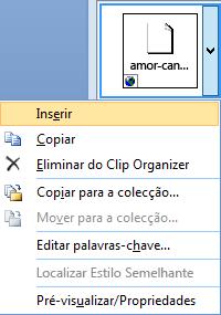 Para inserir uma imagem, clique com o botão direito do rato na imagem em miniatura e selecione Inserir.