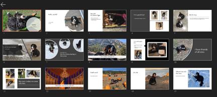 Coleção de diapositivos numa vista de grelha
