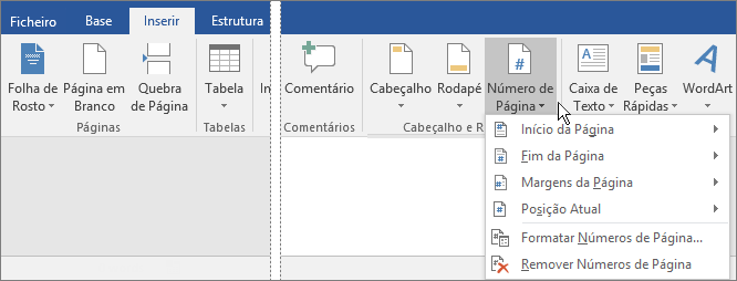 Para adicionar números de páginas, selecione o separador Inserir e, em seguida, selecione Número de Página.