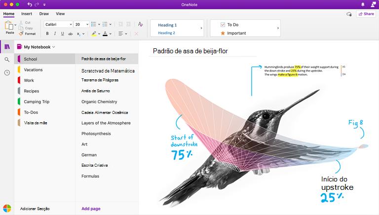Captura de ecrã a mostrar o OneNote para Mac