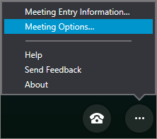 Menu Mais opções com opções de Reunião selecionadas