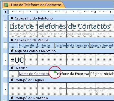 Relatório com uma caixa de texto com um identificador com erro ortográfico
