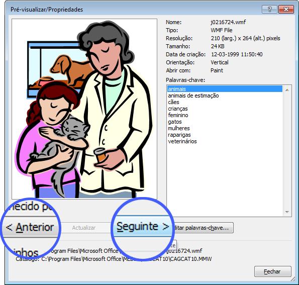 Navegue pelas imagens ao selecionar os botões Anterior e Seguinte na caixa de diálogo Pré-visualizar/Propriedades.