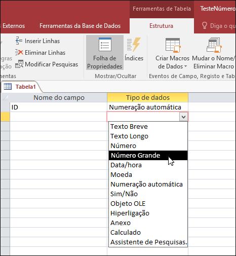 Captura de tela da lista tipos de dados numa tabela do Access. Está selecionado um número grande.