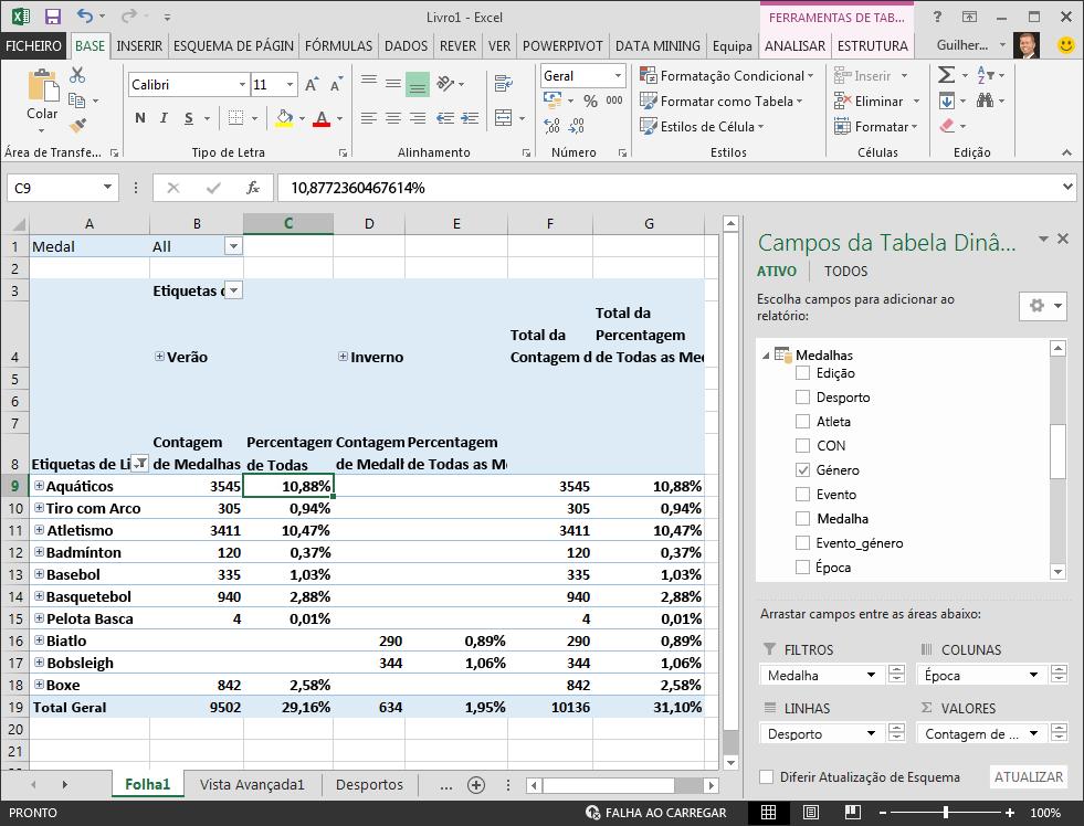 Dados de percentagem da Tabela Dinâmica