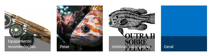 Quatro mosaicos de categoria, cada um com uma imagem e título sugestivos
