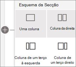 Layouts de secção