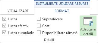 Fila Format Instrumente utilizare resurse, butonul Adăugare detalii