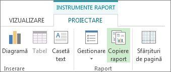 Butonul Raport copiere din fila Proiectare instrumente raport