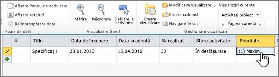 Completați titlul, a datelor și a stării activității de proiect
