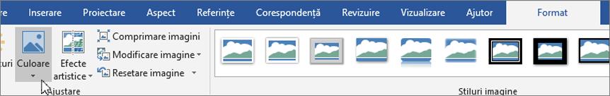 Faceți clic pe fila format, apoi faceți clic pe culoare
