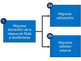 Schemă logică ce afișează că mai întâi efectuați migrarea domeniilor din rețeaua Yammer auxiliară, apoi scoateți din uz rețeaua și efectuați migrarea în paralel a utilizatorilor și a rețelelor externe.