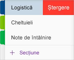 Ștergerea unei secțiuni în OneNote pentru iOS