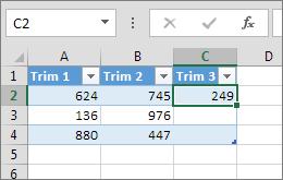 Tastarea unei valori într-o celulă din partea dreaptă a tabelului adaugă o coloană