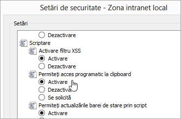 Setări particularizate de nivel, afișând accesul permite programatic clipboard