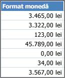 Format de număr monedă aplicate în celule
