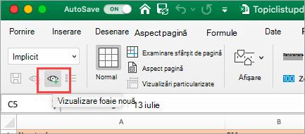 Afișează foaia de calcul Excel