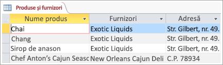 Fragment de ecran de date produsele și furnizorii