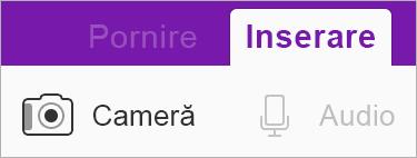 Utilizați Office Lens pentru a insera o imagine în blocnotes