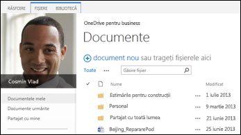 OneDrive pentru business SharePoint 2013
