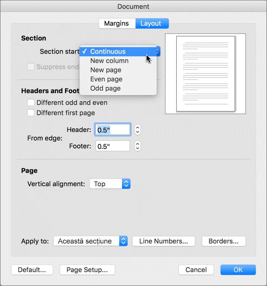 Caseta de dialog a documentului conține setări pentru gestionarea secțiunilor, anteturilor și subsolurilor