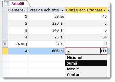 rândul totaluri cu funcțiile Sum și Count