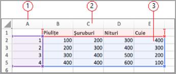 Câmpuri de date în Excel