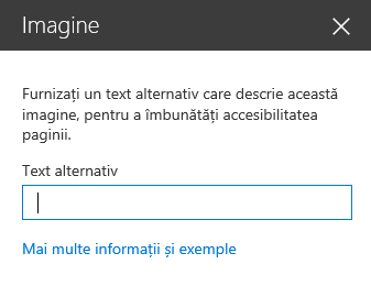 Captură de ecran a casetei de dialog Text alternativ imagine în SharePoint.