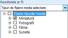 În caseta Rezultatele ar trebui să fie, selectați tipurile de elemente media pe care doriți să le includeți în rezultatele căutării
