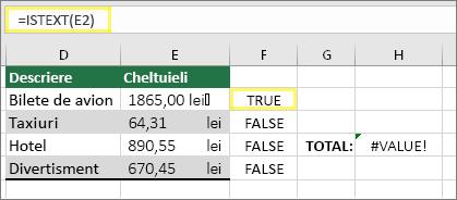 Celula F2 cu =ISTEXT(E2) și rezultatul TRUE