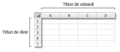 Titlurile de rânduri sau coloane în registrul de lucru