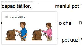 Dicționar de imagini