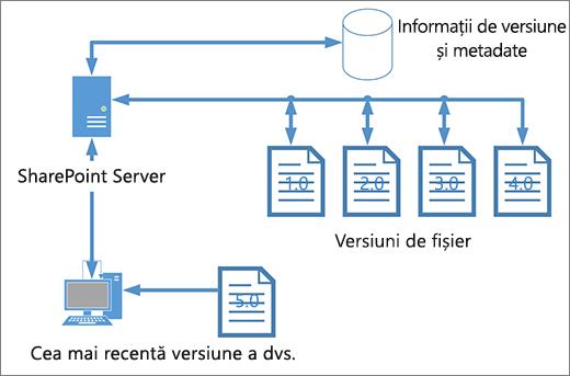 Diagramă de stocare controlul versiunilor