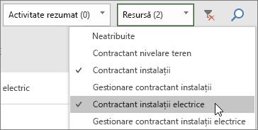 Captură de ecran cu lista verticală Filtrare resurse din Panoul de activități, cu două resurse selectate