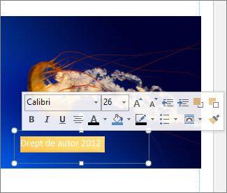 Text Formatare Casetă text