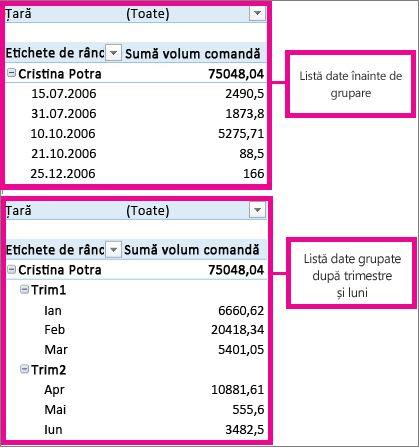 Datele care sunt grupate după luni și trimestre
