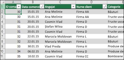 Date eșantion într-un tabel Excel pentru a fi utilizat ca sursă de date PivotTable