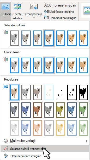 Meniul culoare cu setarea transparență selectată.